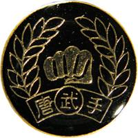 Tiger Claw Tang Soo Do Pin