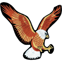 Tiger Claw Eagle Patch - 5