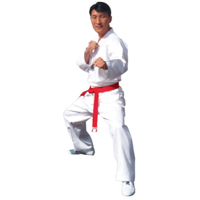 Tiger Claw Essential Taekwondo V-Neck  Uniform