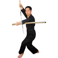 Tiger Claw Han Kook Sword