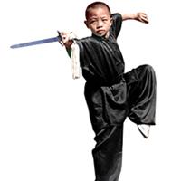 Tiger Claw Traditional Short Sleeve 100% Silk Kung Fu Uniform
