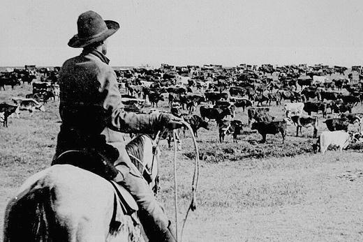 CattleRanchHistory2