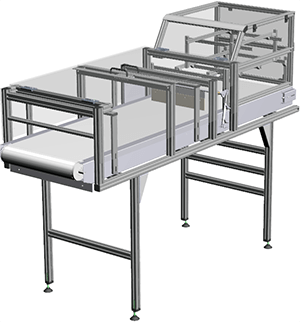 Machine Conveyor