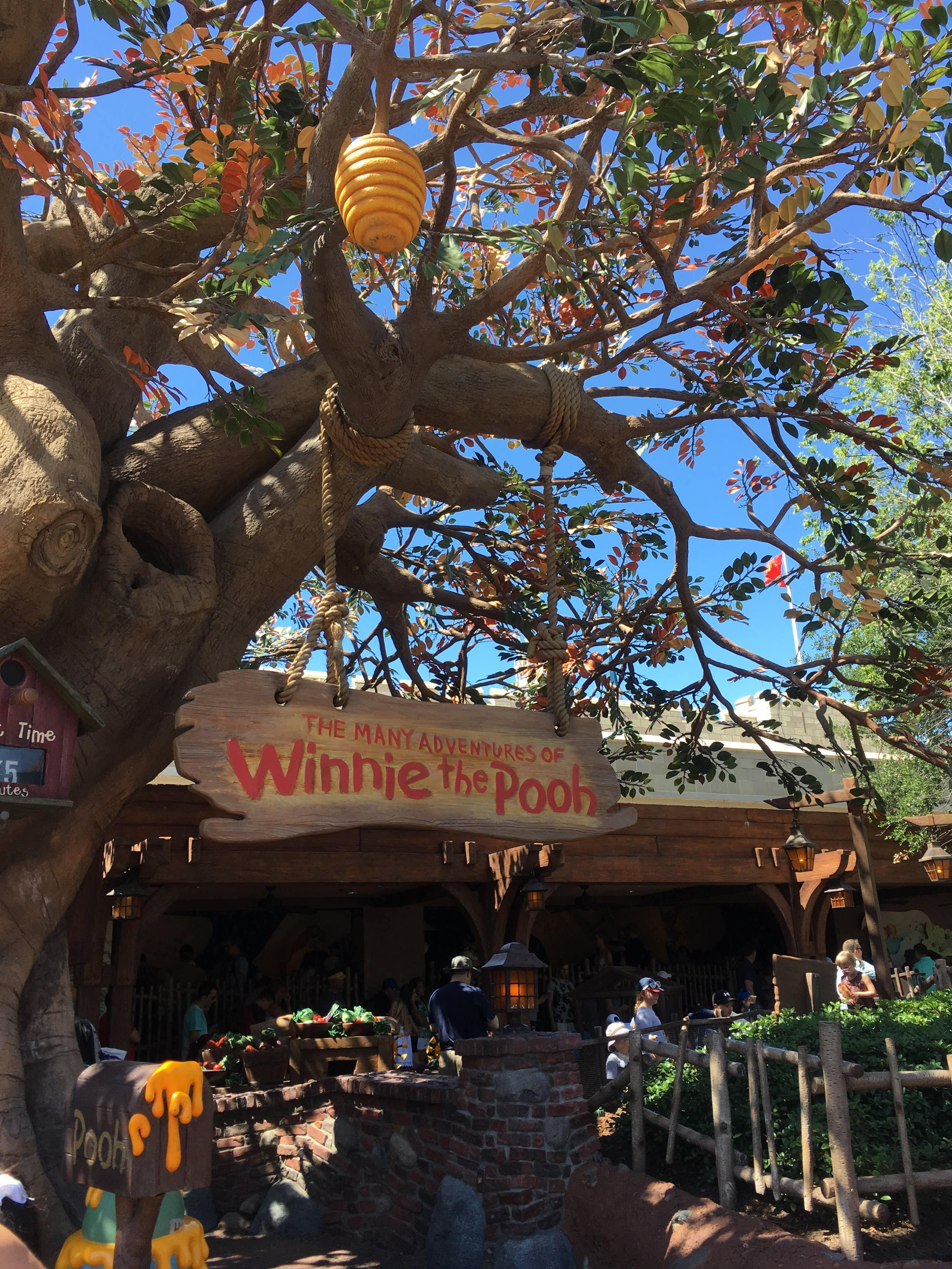 outside the winnie the pooh ride, a tree with the winnie the pooh sign and theme