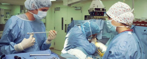 See Yourself as a Sterile Processing Technician? Here's What to Know