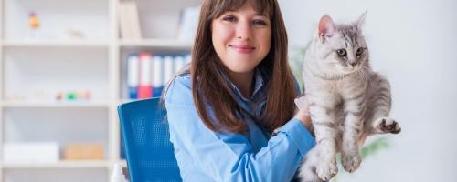Take A Tour Around Our New Veterinary Receptionist Program