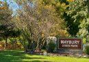 Maybury MTB Trail