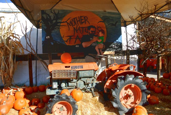 pumpkin, patch, october, autumn, fall, local, phoenix, gilbert, az, arizona, activities, fun, family, kids, season, halloween, gift, candy, carving, bouncy castle, maze, baby, first. adventure, venture, new, parents
