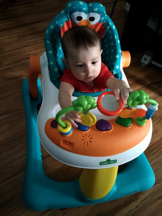 6226e31d7 First 6 Months of Fun and Milestones – Little Conquest