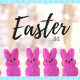family photo, easter, holiday, diy, lifestyle, easter basket, do it yourself, crafty, easter jar, cup, carrot treat bag, rain boots basket, alternative, cake, candy, toys, kids, photo prop, ideas, inspiration, inspo, bunny, peeps, chocolate, fun, easy, creative, 2018, littleconquest, baby, toddler