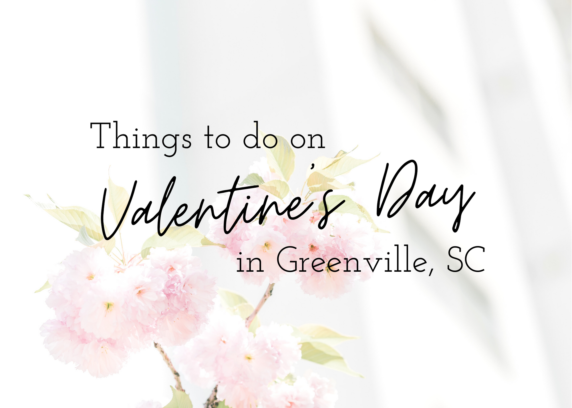 Things to do on Valentine's Day Family friendly: Dinner Out or In Movie Night In or Out Go Cart Bowling Adulting Couple: Ax Throwing Gun Range Escape Room DIY Wine & Paint lifestyle, holiday, valentines day, galentines day, gift guide, gift ideas, love, valentines day, things to do in Greenville, yeahthatgreenville, yeah that greenville, things to do on valentines day, things to do in the greenville sc area, romantic places to eat in Greenville, fun places to go in Greenville, events happening in Greenville, Greenville area, Greenville SC Area, local, upstate, things to do in upstate SC, places to visit in the Greenville area, fun things to do in the Greenville area, good restaurants in the Greenville area, Simpsonville SC, Mauldin SC, Fountain Inn SC, Greenville SC, family friendly places in Greenville SC, things to do for adults in Greenville SC, celebrating Valentines day in Greenville SC, fun activities in Greenville SC, dinner spots in Greenville SC, restaurants to try out in Greenville SC, things for married couples to do on Valentines Day, things for single people to do on Valentines day, things for families to do on Valentines Day