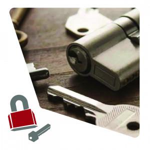 17-010-020-025 LLAVERO IDENTIFICADOR IP-2 750017-I