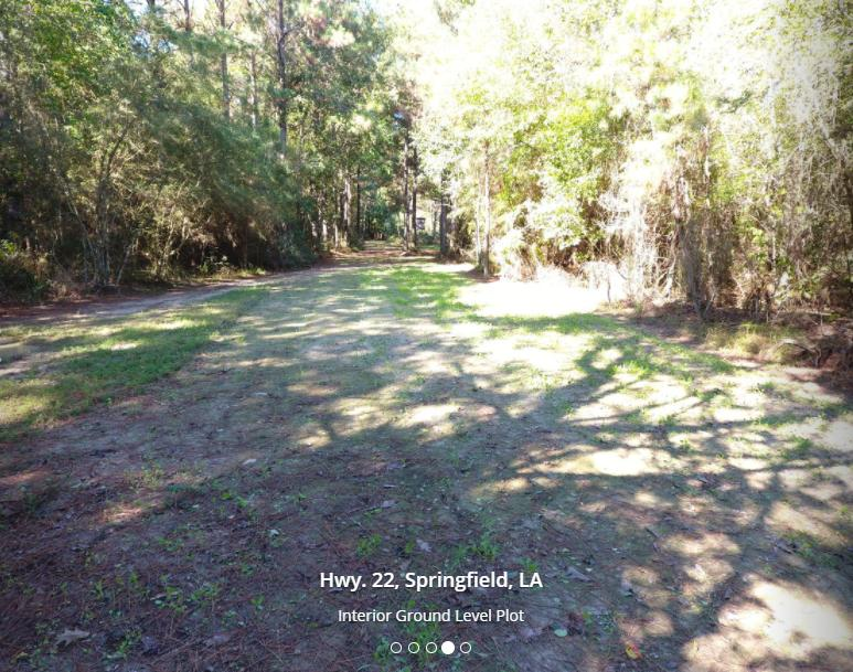 31478 Louisiana 22 Springfield, LA 70462 - alt image 4