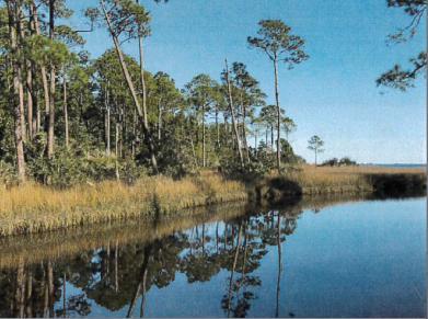 5821 Gulf Breeze Parkway Gulf Breeze, FL 32563 - main image