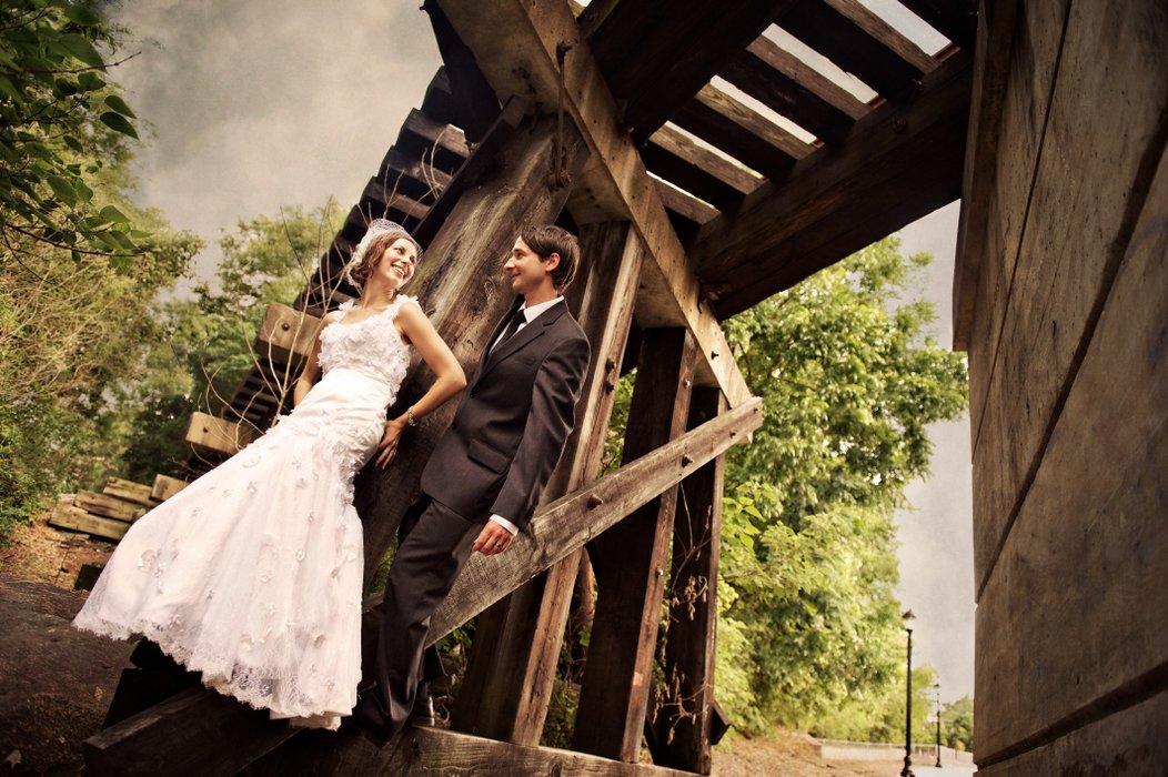 Blume Photography's profile image