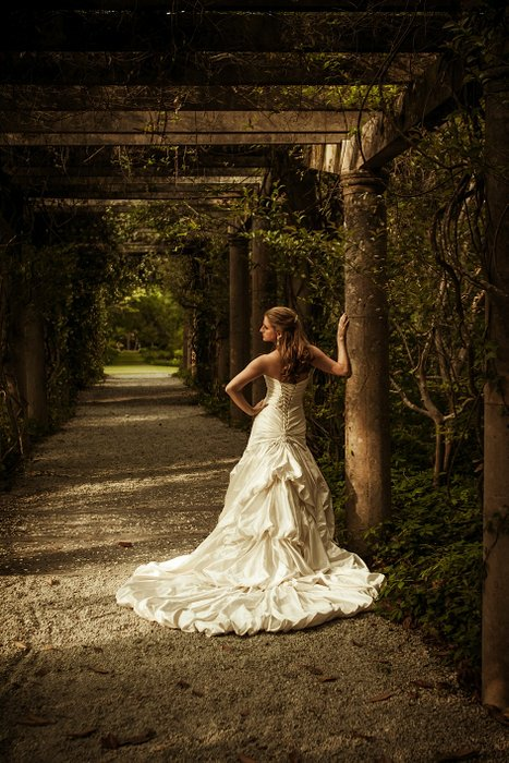Aria Images Photography's profile image