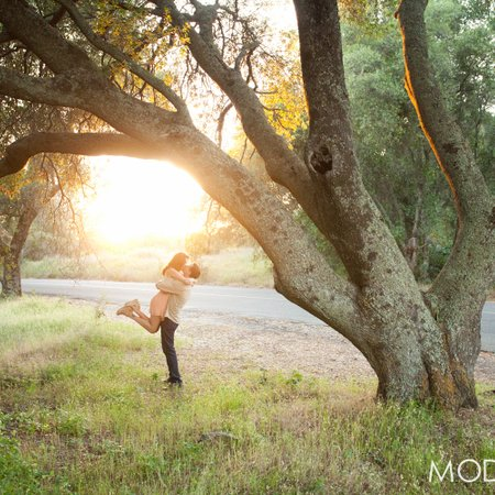 MODERNlite Photography