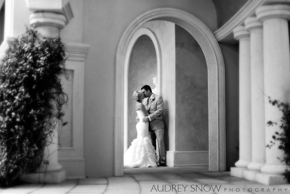 Audrey Snow Photography's profile image