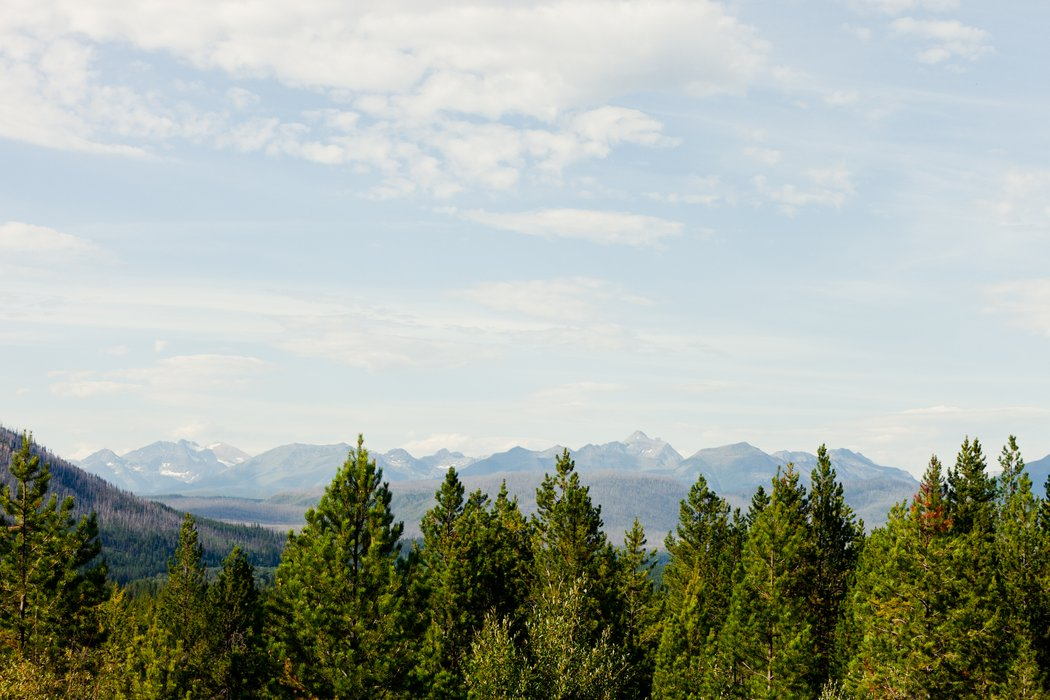 Glacier Park Weddings's profile image