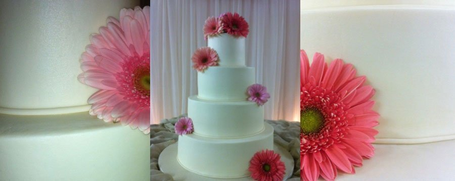 Sweet Ideas The Cake Shoppe's profile image
