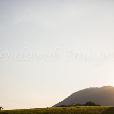 DaveB Images