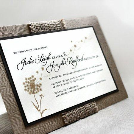 Paperkat Design