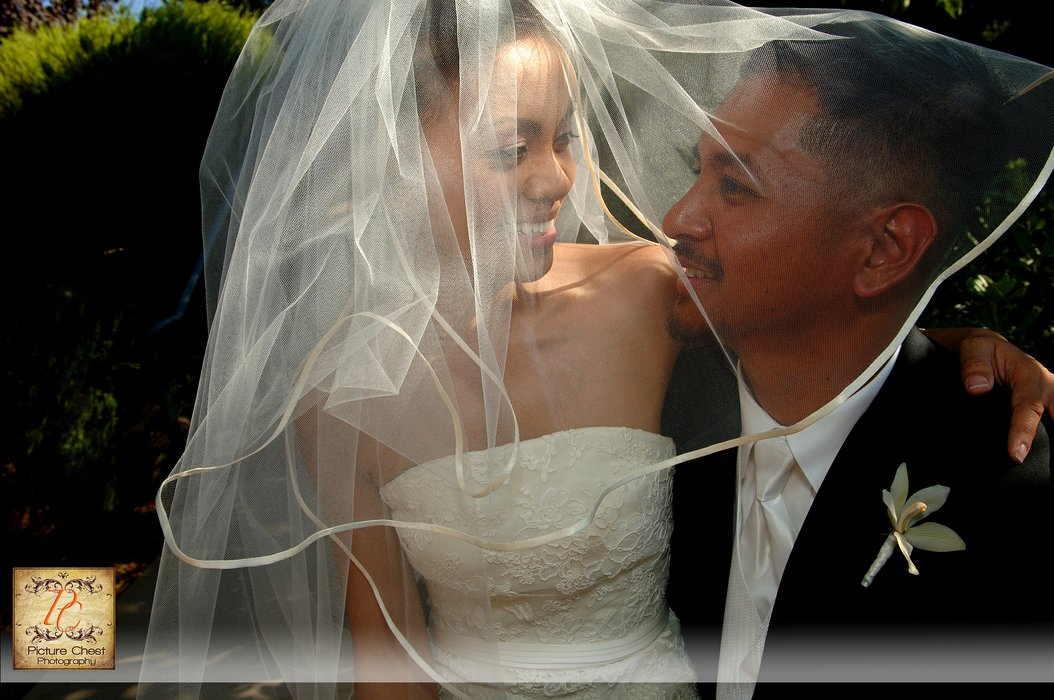 Picture Chest Photography { Weddings }'s profile image