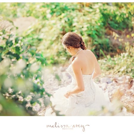 Melissa Avey Photography
