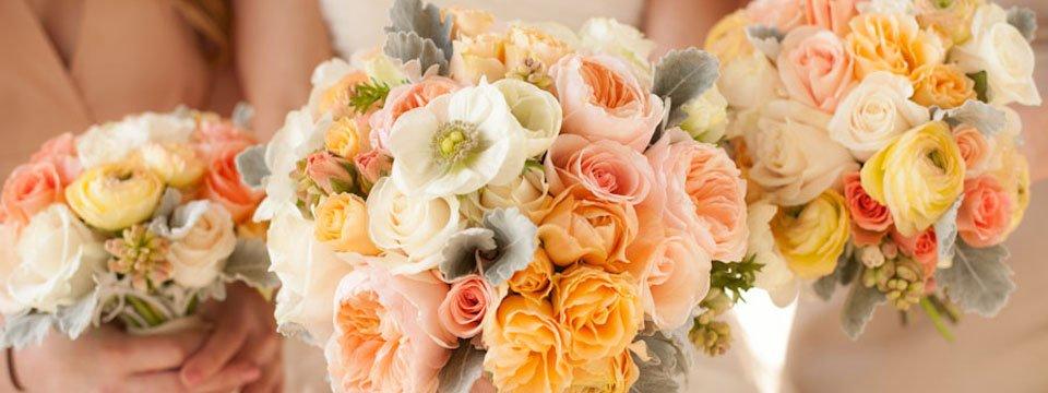 Cherry Blossom Floral Designs's profile image