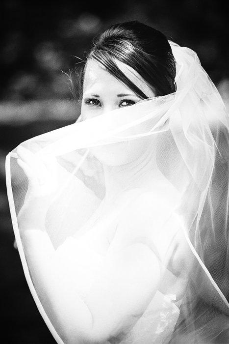 Photowed Photography's profile image