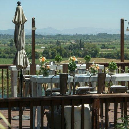 Armida Winery, a Milestone Property