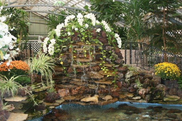 Morrison Conservatory's profile image
