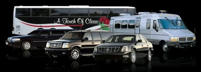 A Touch of Class Limousine's profile image