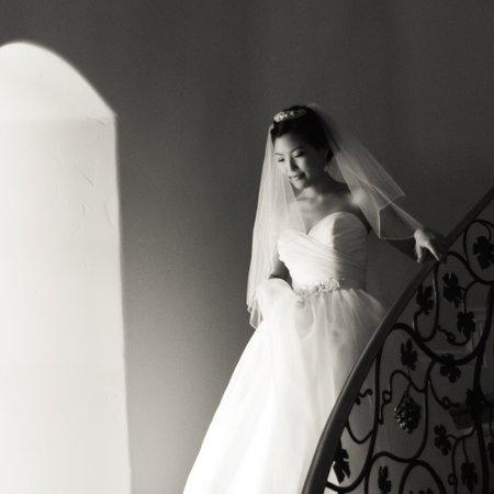 Tara Marie Photography