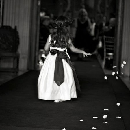 Absolute Perfection Wedding Consultancy