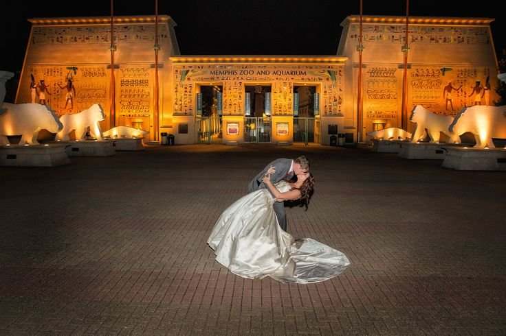 Steve Herlihy Photography's profile image