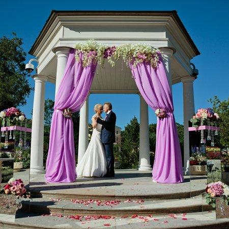 Apelcin Wedding Company