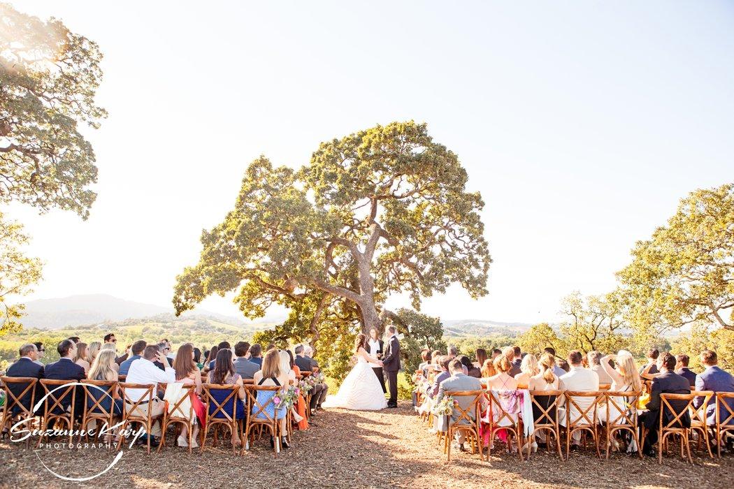 Copain Wines, a Milestone Property's profile image