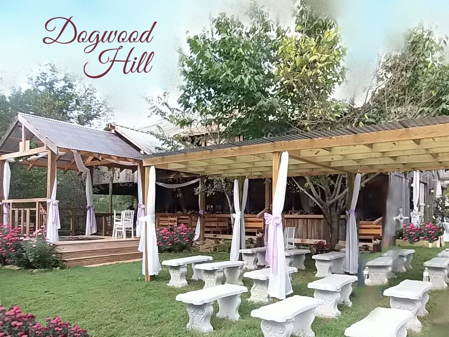 The Flower Farm at Dogwood Hill's profile image