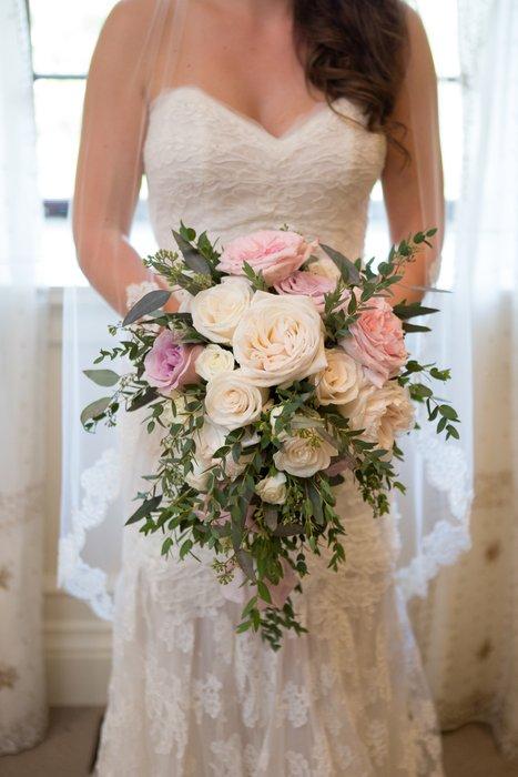 Plush Flowers's profile image