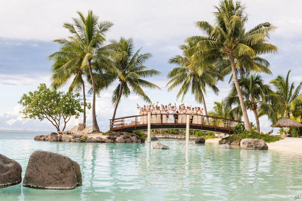 wedding polynesia's profile image