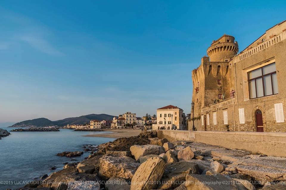 Torre Perrotti's profile image