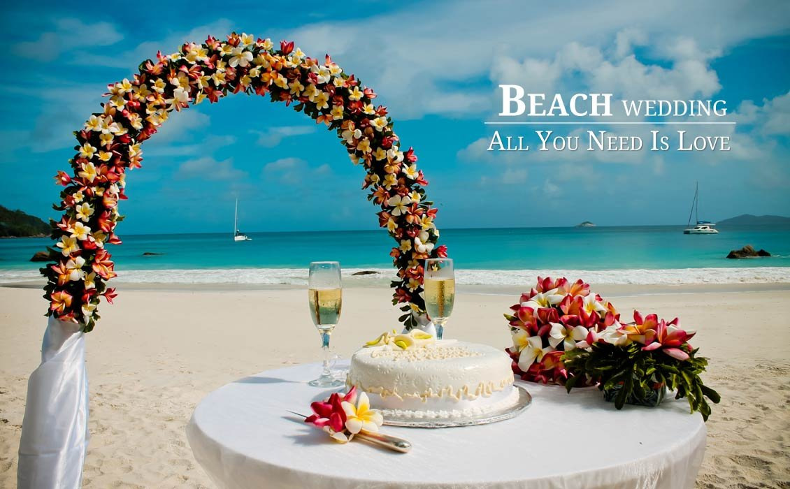 Seychelles Wedding Organization's profile image