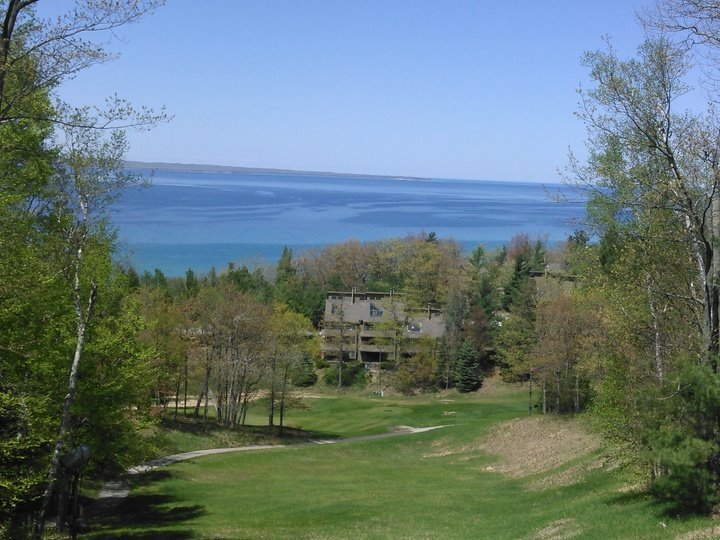 The Homestead Resort's profile image