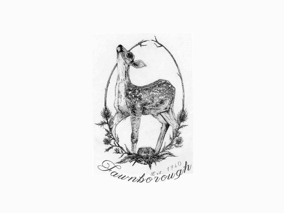Fawnborough's profile image