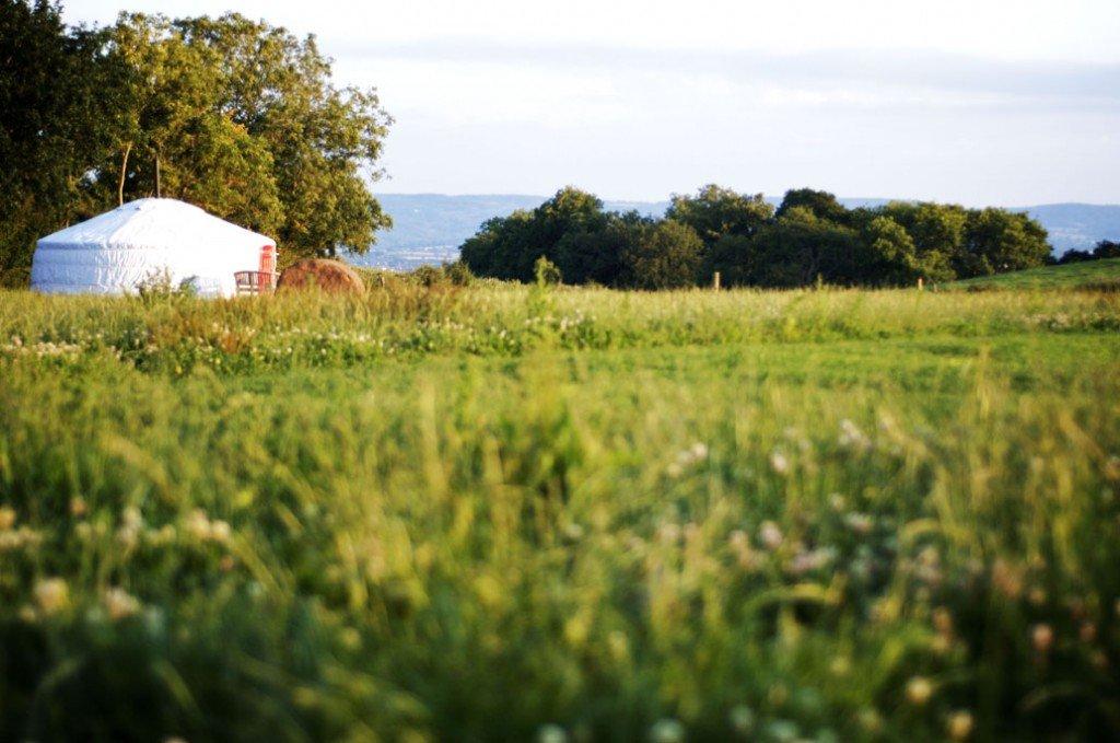 Somerset Yurts's profile image