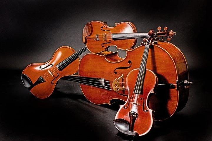 Nakisa's string ensemble 's profile image