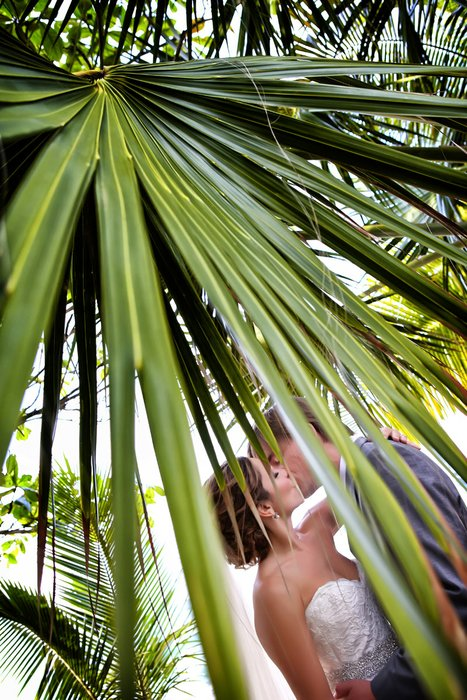 Yamilette Arana Photography's profile image