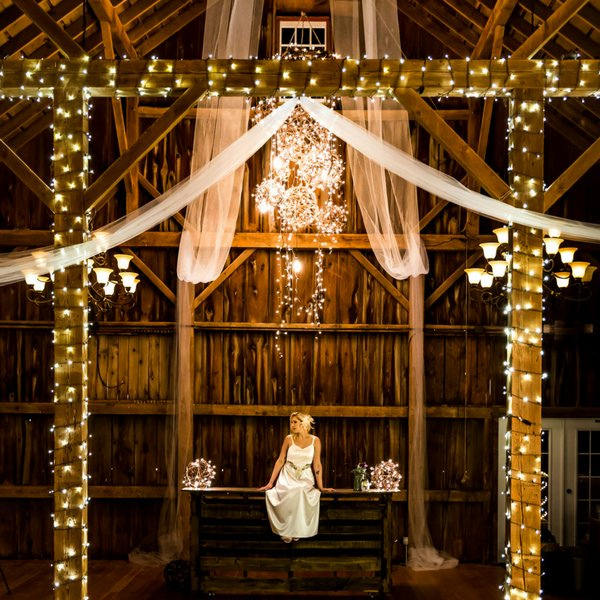 Traditions Specialty Lighting Professionals 's profile image