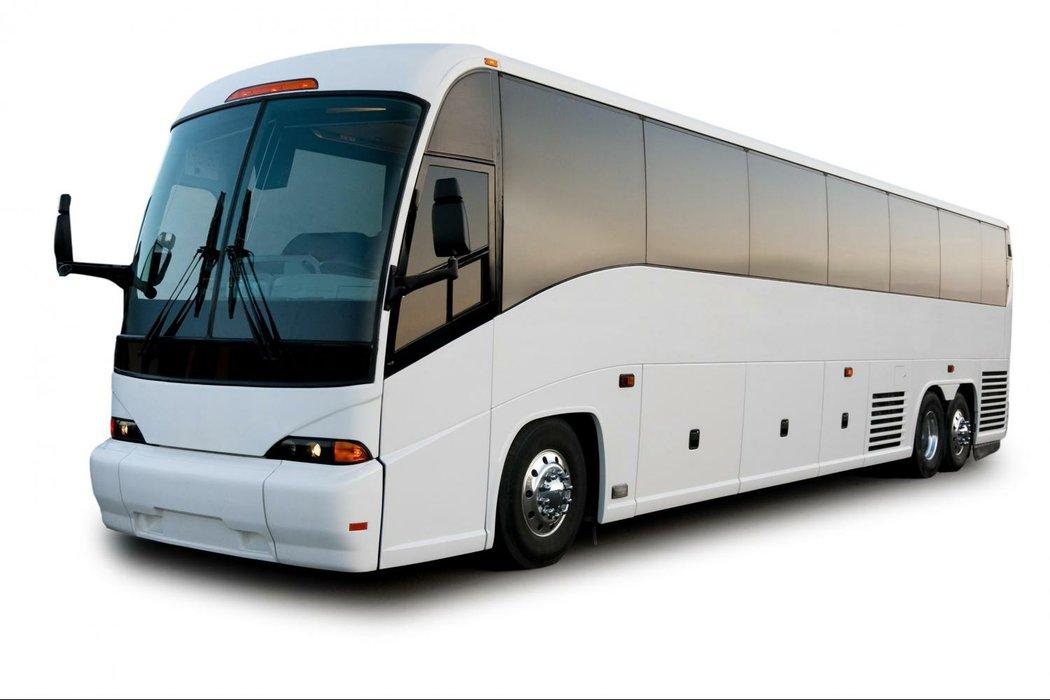 Colorado Custom Coach's profile image